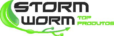 Storm Worm | Informatica Verde